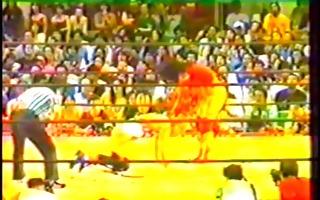 male pro wrestling
