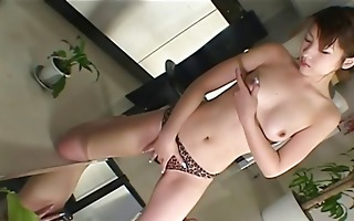 sweet and wild d like to fuck toys her love